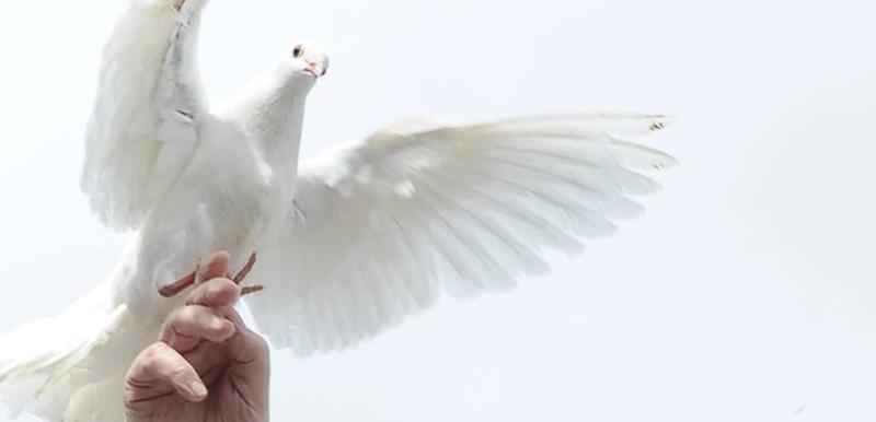 En moi, Ayez la Paix